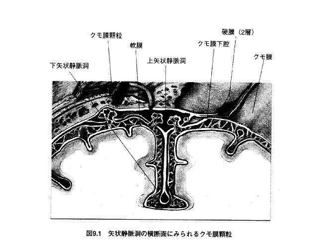 Joumyakudou1