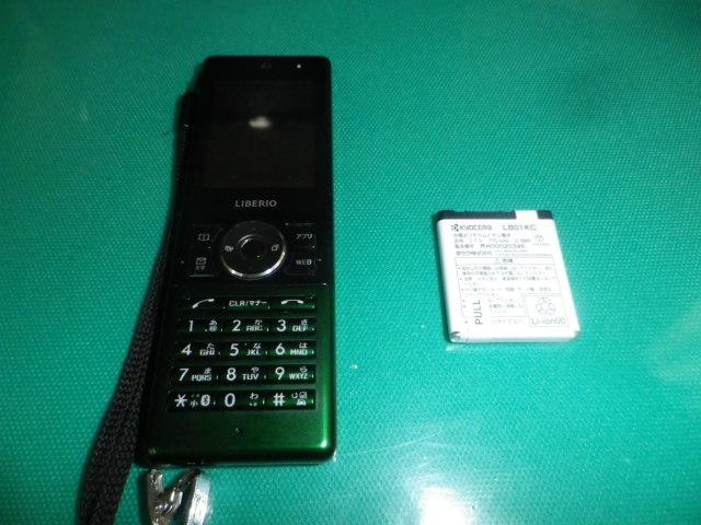 Imgp0011